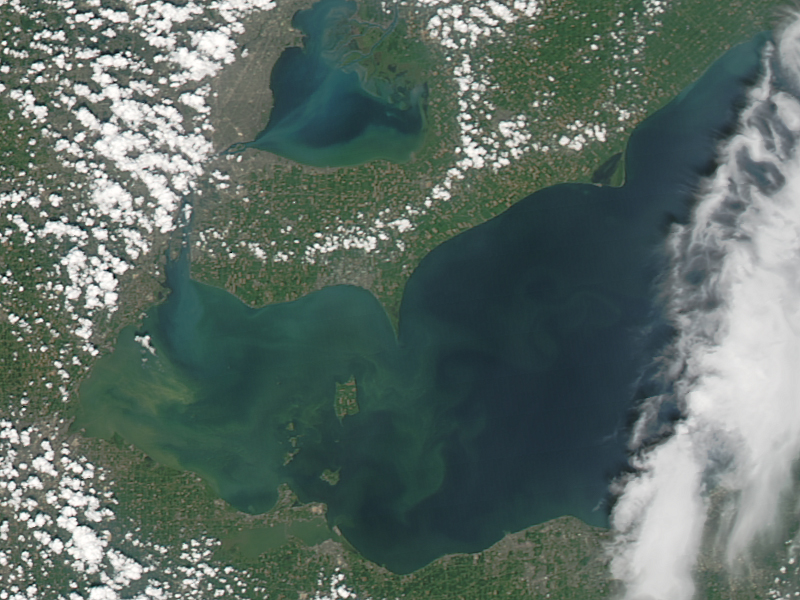A 2011 LandSat image shows the green scum signaling the worst algae bloom in Lake Erie in decades (NASA photo)